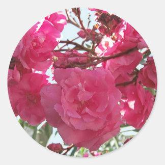 Double Oleander 1 Classic Round Sticker