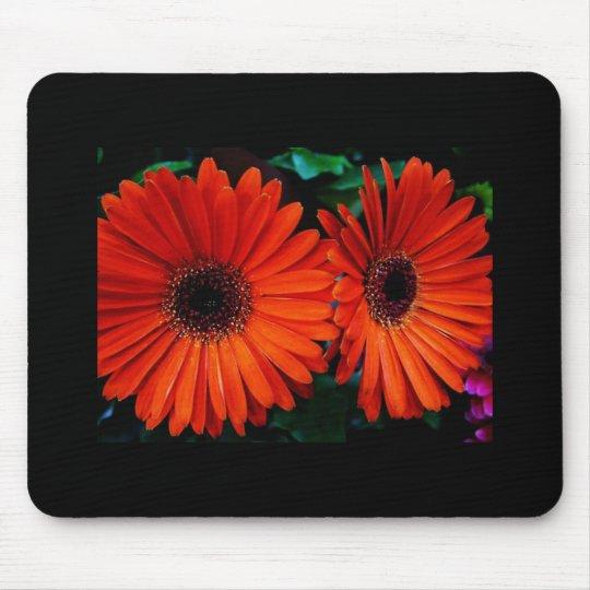 double orange color daisy flowers mouse pad