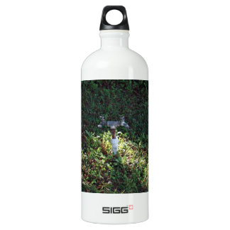 Double outlet water spigot water bottle