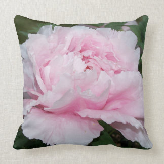 Double Peony Blooms x 2 Pillow