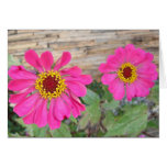 Double pink blooms stationery note card