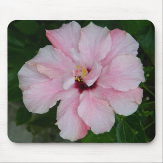Double Pink Hibiscus Mousepad