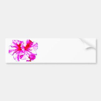 Double Pink Splash Azalea Blooms Bumper Sticker