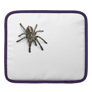 Double protection for your ipad! Spider sleeve iPad Sleeves