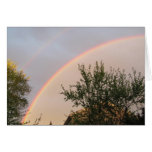 Double Rainbow ~ card