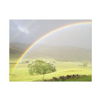 Double rainbow in Glenshee Scotland. Canvas Print