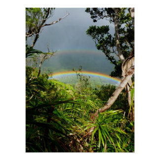 Double Rainbow over Manoa valley Poster