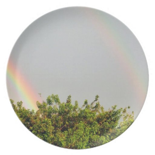 Double Rainbow Photo with sky and trees Plate