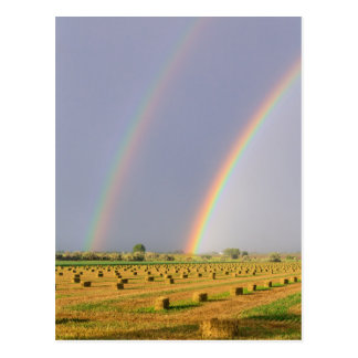 Double Rainbow Postcard