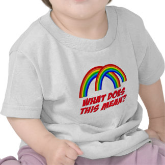 Double Rainbow Tee Shirt