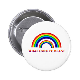 Double Rainbow. What does it mean? Pinback Button