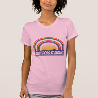 Double Rainbow What Does It Mean? T-Shirt