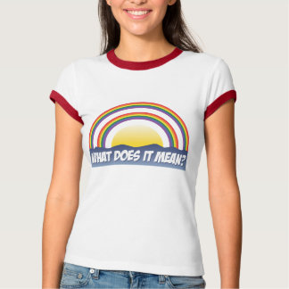 Double Rainbow What Does It Mean? Tee Shirt