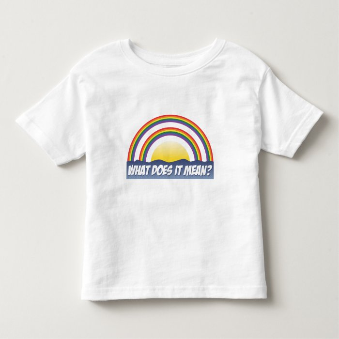 Double Rainbow What Does It Mean? Toddler T-shirt