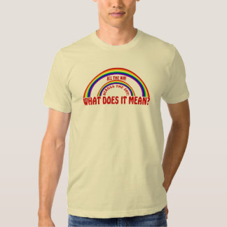 DOUBLE RAINBOW - WHAT DOES IT MEAN? TSHIRT