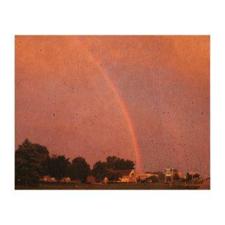 Double Rainbows at Sunset Cork Fabric