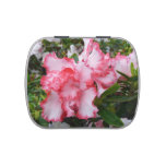 Double Red and White Azaleas Spring Floral Candy Tin