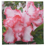 Double Red and White Azaleas Spring Floral Cloth Napkin