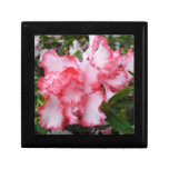 Double Red and White Azaleas Spring Floral Jewelry Box