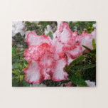 Double Red and White Azaleas Spring Floral Jigsaw Puzzle