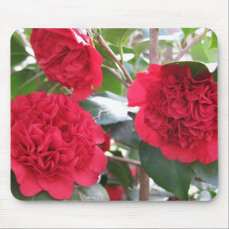 Double Red Camellias Mousepad