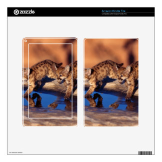 Double Reflections Skin For Kindle Fire