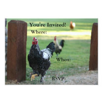 Double Sided Invitation, Rooster Invitation
