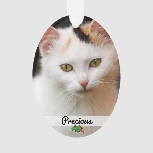 Double Sided Pets Photo Name Ornament