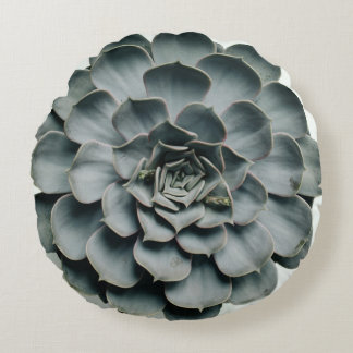 Double Sided Succulent Pillow
