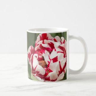 Double Striped Tulip Classic White Coffee Mug
