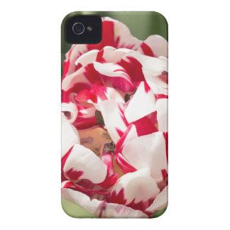 Double Striped Tulip iPhone 4 Case