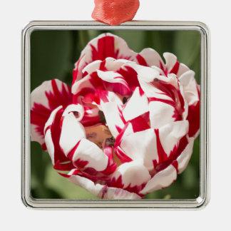 Double Striped Tulip Square Metal Christmas Ornament