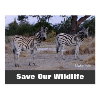 Double Take, Save Our Wildlife Postcard