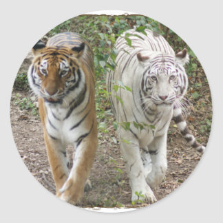 DOUBLE TROUBLE 2 TIGERS ORANGE/WHITE CLASSIC ROUND STICKER