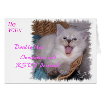 Double Use Invitation RSVP Meowing Kitten Card