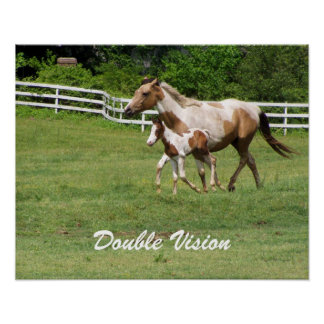 DOUBLE VISION MARE AND FOAL POSTER