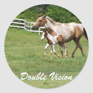 DOUBLE VISION CLASSIC ROUND STICKER
