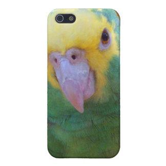 Double Yellow Headed Amazon iPhone 4 Case