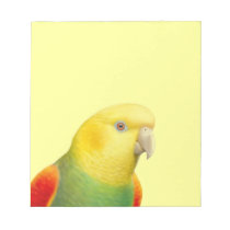 Double Yellow Headed Amazon Parrot Notepad
