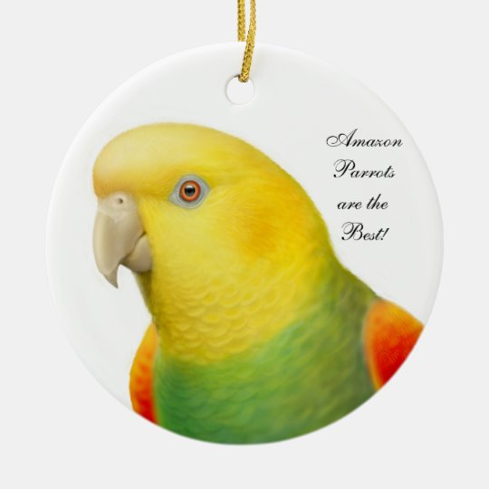 Double Yellow Headed Amazon Parrot Ornament