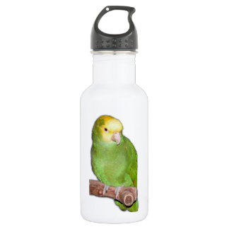 Double Yellow Headed Amazon Parrot Water Bottle