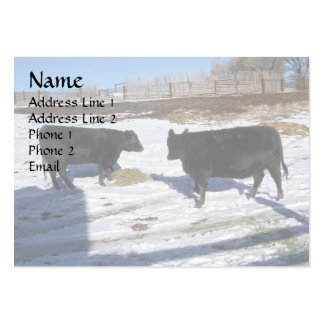 Double Your angus Double Your Fun Large Business Cards (Pack Of 100)