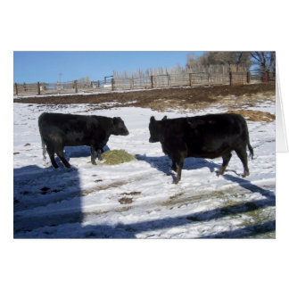 Double Your angus Double Your Fun Card