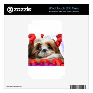 doubt skin for iPod touch 4G