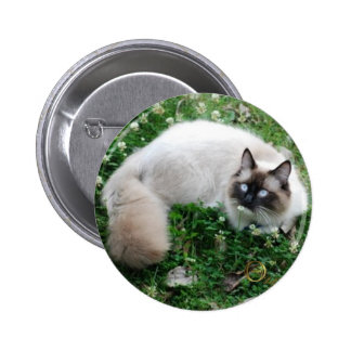 Dougal Amongst the Clover Pinback Button