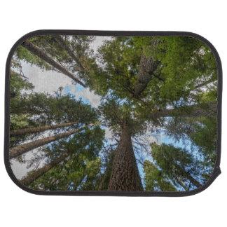 Douglas Fir tree canopy Car Mat