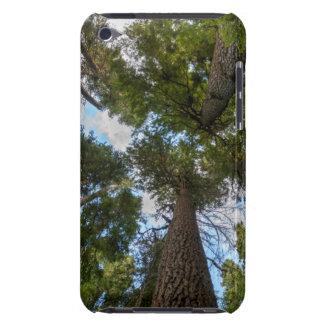 Douglas Fir tree canopy Case-Mate iPod Touch Case