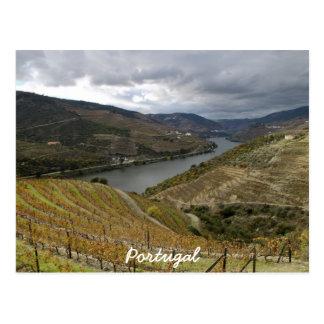 Douro Postcard