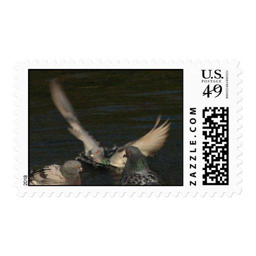 dove bath postage stamps