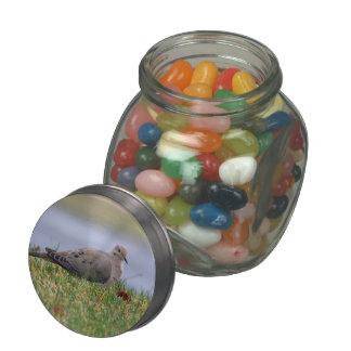 Dove Bird Jelly Belly Candy Jar